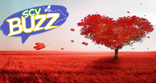SCV Buzz – Family Fun Activities In Santa Clarita