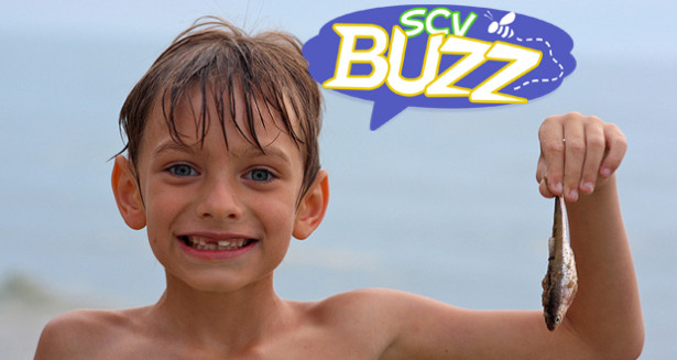SCV Buzz - Labor Day